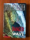 Danger Wave - David Metzenthen