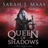 Queen of Shadows - Sarah J. Maas, Elizabeth Evans
