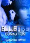 Blue Fire - Domination (Fire Series) - Cassandre Dayne, Shane Willis