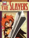 The Slayers: D20 System Role-Playing Game - Michelle Lyons