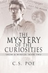 The Mystery of the Curiosities (Snow & Winter) - C.S. Poe