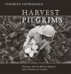 Harvest Pilgrims: Mexican and Caribbean Migrant Farm Workers in Canada - Vincenzo Pietropaolo