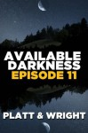 Available Darkness: Episode 11 - Sean Platt, David W. Wright