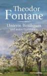 Unterm Birnbaum und andere Erzählungen - Theodor Fontane