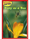 Busy Bees (Time for Kids Early Readers Series) Level 6 - Dona Herweck Rice