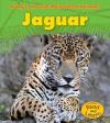 Jaguar (A Day in the Life: Rain Forest Animals) - Anita Ganeri