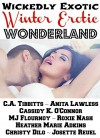 Wickedly Exotic Winter Erotic Wonderland - C.A. Tibbitts, Anita Lawless, Cassidy K. O'Connor, MJ Flournoy, Heather Marie Adkins, Roxie Nash, Christy Dilg, Josette Reuel