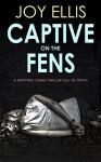 Captive on the Fens - Joy Ellis