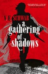 A Gathering of Shadows (A Darker Shade of Magic) - V.E. Schwab