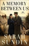 A Memory Between Us (Wings of Glory Book #2): A Novel - Sarah Sundin