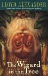 The Wizard in the Tree - Lloyd Alexander, Laszlo Kubinyi