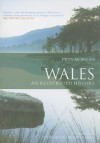 Wales: An Illustrated History - Prys Morgan