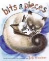 Bits & Pieces - Judy Schachner
