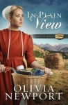 In Plain View (Valley of Choice) - Olivia Newport