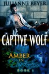 Captive Wolf (Werewolf Erotic Romance) (Amber in Darkness #1) - Julianne Reyer