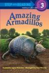 Amazing Armadillos - Jennifer Mckerley, Paul Mirocha