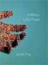 A Million Little Pieces (MP3 Book) - Oliver Wyman, James Frey