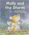 Molly and the Storm - Christine Leeson, Gaby Hansen
