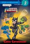 Catch Catwoman! (DC Super Friends) - Billy Wrecks, Mike DeCarlo, David D. Tanguay
