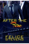 After the Fire (Through Hell and Back #2) - Felice Stevens