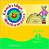 Cambridge Mathematics Assessment CD-ROM 3 Ages 9-11 Single User - Duncan Rasmussen, Nick Tinsdeall