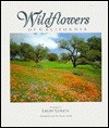 Wildflowers Of California - Larry Ulrich