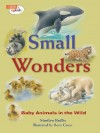 Small Wonders: Baby Animals in the Wild - Marilyn Baillie, Romi Caron