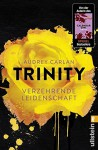 Trinity - Verzehrende Leidenschaft (Die Trinity-Serie, Band 1) - Christiane Sipeer, Audrey Carlan