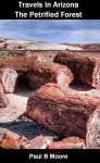 Travels In Arizona - The Petrified Forest - Paul Moore