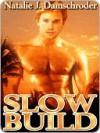 Slow Build - Natalie J. Damschroder