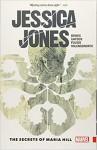 Jessica Jones Vol. 2: The Secrets of Maria Hill - Brian Michael Bendis, Michael Gaydos