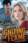 Igniting the Flame (Firebrand Series) - Sandra Robbins
