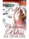 Christmas Bliss - A.S. Fenichel