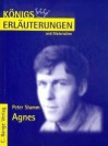 Agnes. Erläuterungen und Materialien. (Lernmaterialien) - Klaus Bahners, Magret Möckel, Peter Stamm