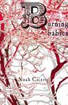 Burning Babies - Noah Cicero