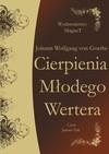 Cierpienia Młodego Wertera - audiobook - Johann Wolfgang, von Goethe