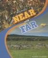 Animals Near and Far - Jenna Lee Gleisner