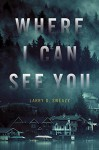 Where I Can See You - Larry D. Sweazy
