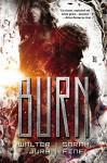 Burn - Sarah Fine, Walter Jury