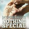 Nothing Special - Jay Northcote, Matthew Lloyd Davies