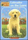 Labrador on the Lawn - Lucy Daniels, Ann Baum, Mary Ann Lasher