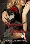 Accidental Valentine - Claire Gillian, Katrina Sizemore, S.L. Hughson, Jaylee Austin, Wendy Sparrow