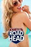 Road Head: The Bundle - N.S. Charles