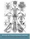 Atlas of Crustacean Larvae - Joel W. Martin, Jørgen Olesen, Jens T. Høeg