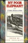 My Poor Elephant: 27 Male Writers at Work - Eve Shelnutt, Jill Dible