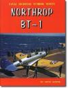 Northrop BT-1 - Steve Ginter