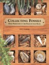 Collecting Fossils: Hold Prehistory in the Palm of Your Hand - Steve Parker, Murray Weston