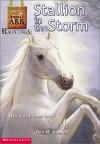 Stallion in the Storm - Ben M. Baglio