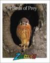 Birds Of Prey (Zoobooks Series) - John Bonnett Wexo, Richard Oden, Kenneth Goldman