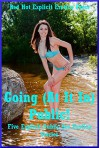 Going (At It In) Public! Five Explicit Public Sex Erotica Stories - Tara Skye, Nycole Folk, Amy Dupont, Sarah Blitz
